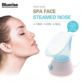 Electric Facial Steamer EU Plug Vapeur Skin Care Machine Spa System Face Care Beauty Salon Facial Thermal Spray Device Sprayer