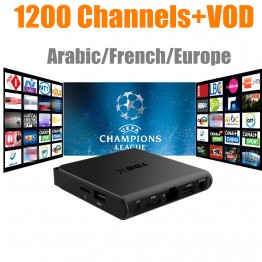 French Arabic IPTV T95X Amlogic S905X Android 6.0 TV Box Quad Core 4K HDMI 2.4G WiFi Smart TV Box with Canal+M8C Be1n O5n M6+VOD
